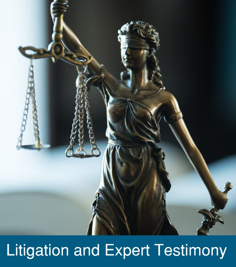 Litigation and Expert Testimony 2 Sq Blue Caption left-align Resized